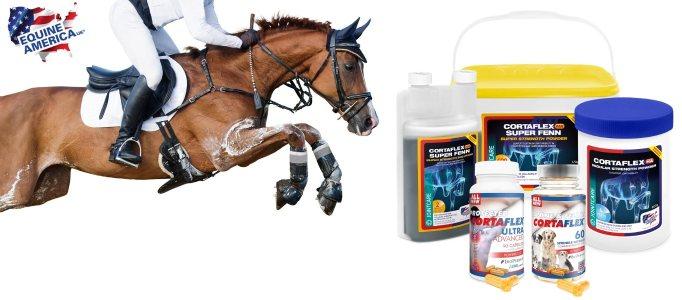Cortaflex suplementy dla koni