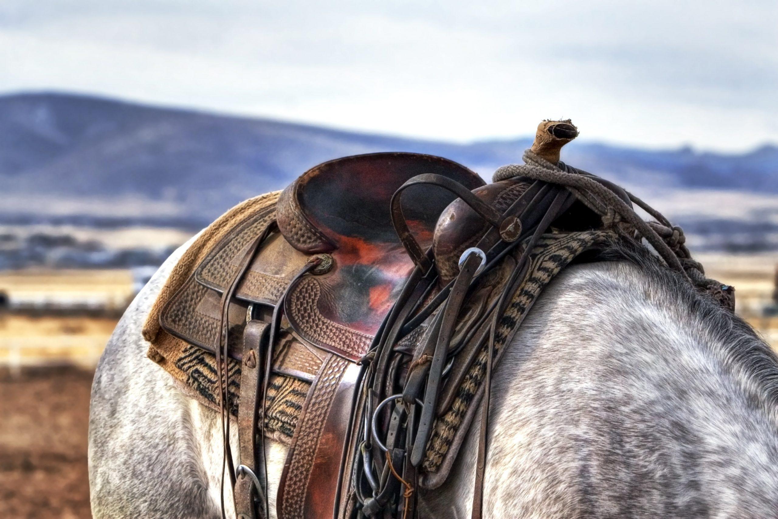 Balotade® Siodło westernowe Bolt