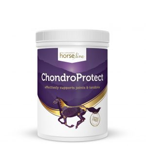 suplementy dla koni pokusa chondro protect