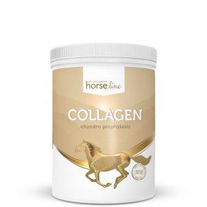 suplementy dla koni pokusa kolagen